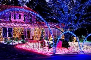 outdoor-christmas-lights-23[1]