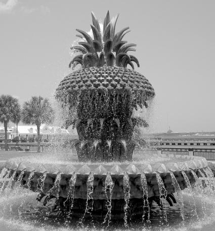 9_Waterfront_Park_chcvb[1]