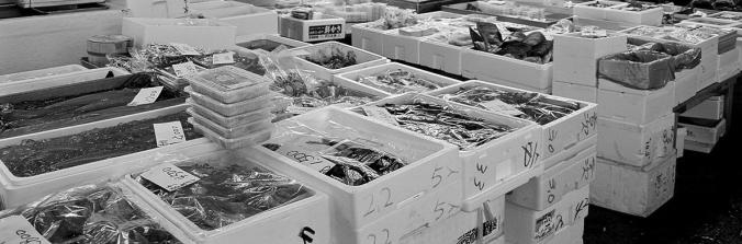tsukiji-fish-market[1]