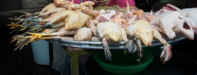 poultry-vendor-mekong-river-vietnam[1]