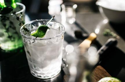 thyme-gin-and-tonics-6w[1]