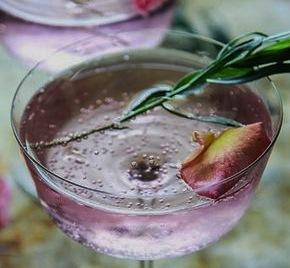 landscape-1493650787-gin-cocktails[1]