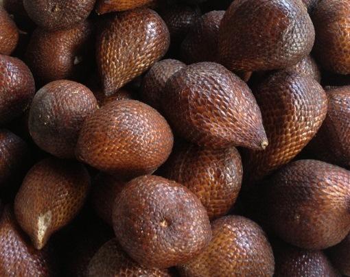 snake-fruit[1]